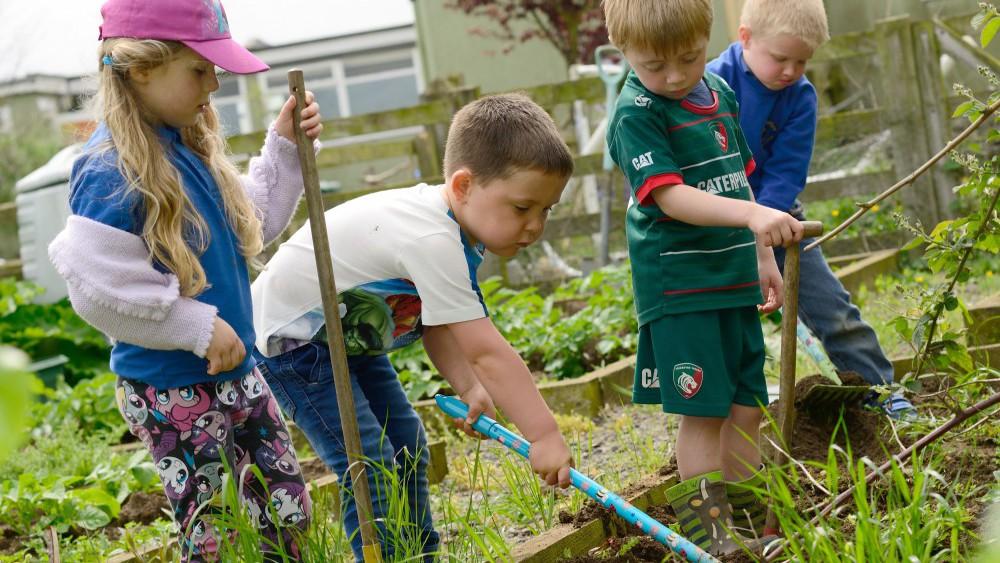 pre-school chidlren working in vegetable patch