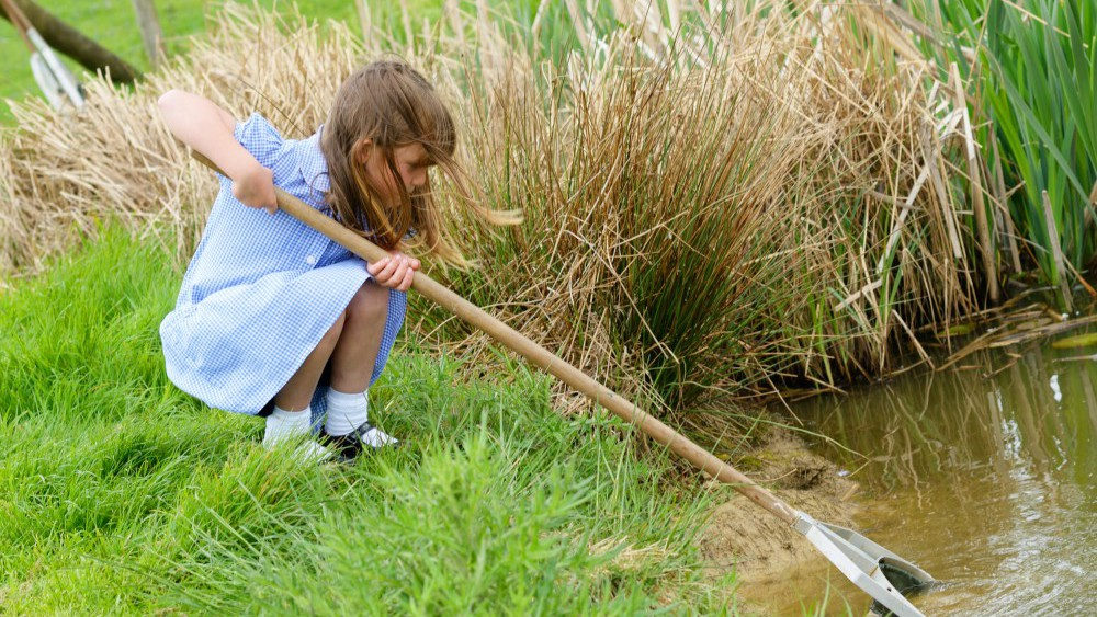 pond dipping with after school club