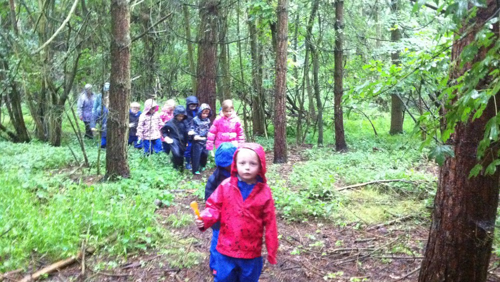 school trip in woods