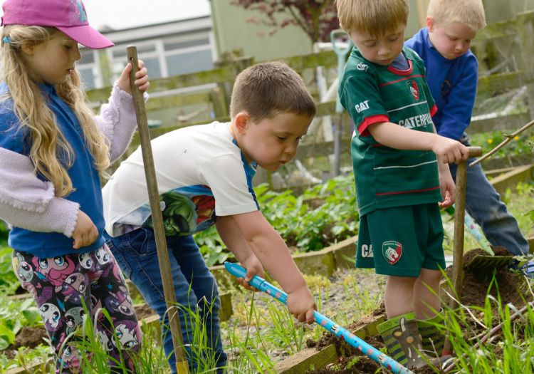 pre-school chidlren working in vegetable patch